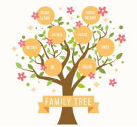 Nurture-You-Heal-You-blog-family-lines